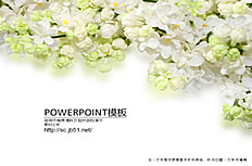 Beautiful elegant flower ppt template