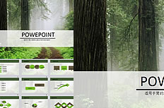Forest background ppt template download